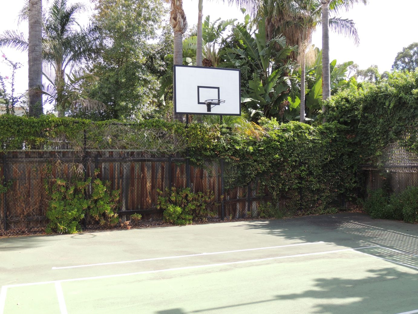 Gallery grainger bed breakfast play basketball at grainger bed amp breakfast perth western australia dailygadgetfo Images